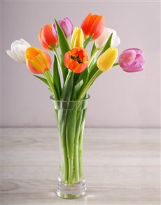 gifts: Happiness Tulip Temptation!