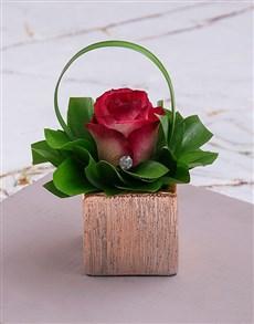 flowers: Pink Rose Magic in Square Vase!