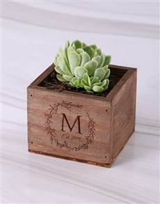 plants: Personalised Laurel Wooden Box with Succulent!