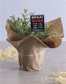 gifts: Rosemary Plant with Braai Rub Recipe!