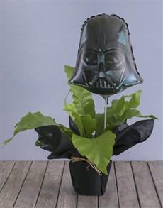 plants: Asplenium Nidus With Darth Vader Balloon!