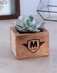 flowers: Personalised Succulent In Mini Crate !