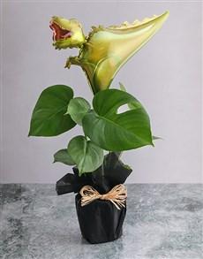 plants: Monsteria With Trex Balloon!