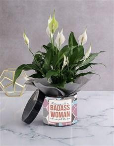 gifts: Badass Spathiphyllum Plant!