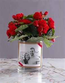 plants: Personalised Begonia Love Photo Vase!