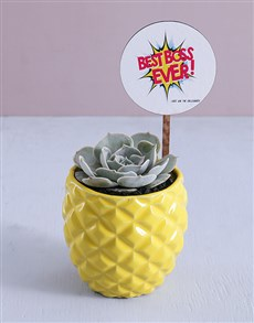 gifts: Best Boss Ever Succulent In Pineapple Pot!