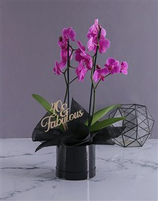 gifts: Personalised Fabulous Birthday Orchids!
