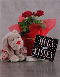 flowers: Red Rose Bush Delight!