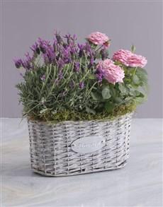 flowers: Rose Blooms And Lavender Basket!