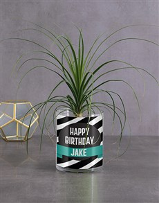 flowers: Personalised Birthday Pony Tail Palm!