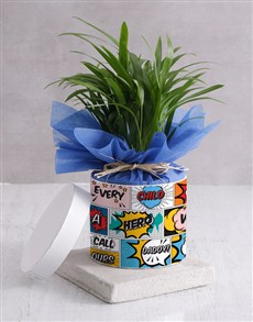 flowers: Areca Palm for Dad!