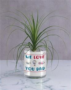 flowers: We Love Dad Ponytail Palm!