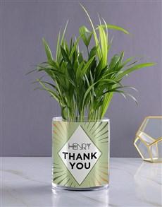 flowers: Personalised Areca Palm!