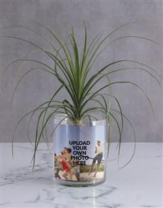 flowers: Personalised Ponytail Palm in Vase!