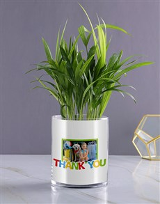 gifts: Personalised Thank You Areca Palm!