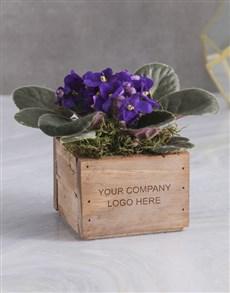 flowers: Personalised African Violet Crate!