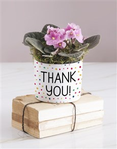 gifts: Thank You African Violet!
