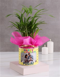 flowers: Personalised Birthday Areca Bamboo!