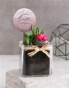 gifts: Personalised Succulent Mix In Square Vase!
