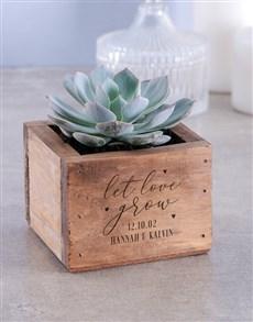 plants: Personalised Let Love Grown Succulent!