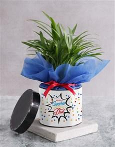 flowers: Areca Bamboo For Superhero Dad!