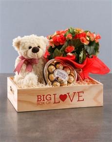flowers: Begonia Love Box!
