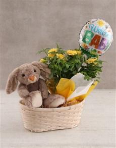 flowers: Teddy Rabbit and Yellow Rose Bush!
