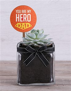 gifts: Mini Succulent Delight!