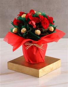 flowers: Edible Begonia Arrangement!
