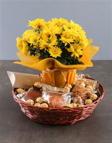 plants: Cheerful Chrysanthemum and Gourmet Basket!