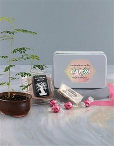 flowers: Growing Love Baobab Tree!
