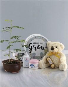 plants: Watch Me Grow Baobab Tree with Teddy Plush!