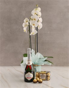 flowers: Bubbly Birthday Orchid Hamper!