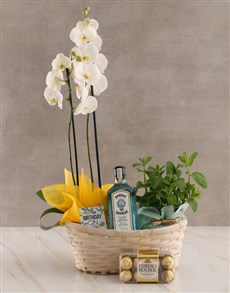 gifts: Mint and Gin Orchid Birthday Hamper!