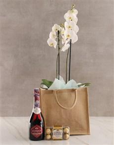 flowers: Totes Amazing Orchid Gratitude Hamper!