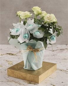 flowers: White Rose Bush And Chocolates!