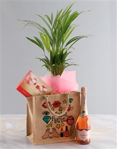 gifts: Areca Bamboo Planter And Goodie Tote Bag!