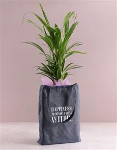 gifts: Areca Bamboo Planter In Denim Bag!