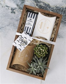 flowers: Birthday Wishes Succulent Hamper for Him!