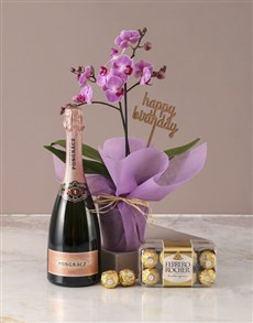 plants: Pink Midi Orchid Birthday Hamper!