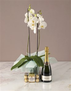 flowers: The Best White Orchid Hamper!