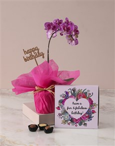 flowers: Midi Pink Orchid Birthday Gift!