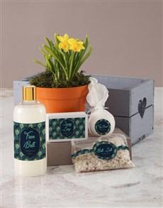 gifts: Daffodil Bath and Body Peacock Pamper Hamper!
