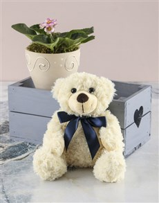 flowers: African Violet In Heart Crate Plush Combo!