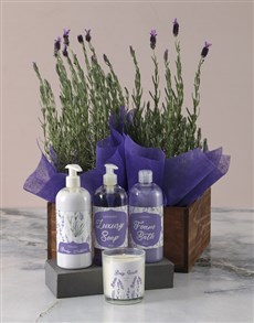 flowers: Luxurious Lavender Duo Bath and Body Gift Set!