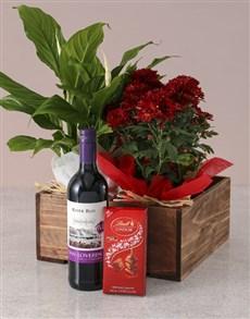 flowers: Spathiphyllum and Chrysanthemum Gift Hamper!