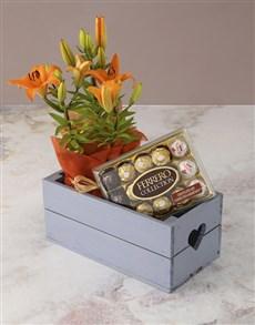 plants: Asiatic and Ferrero Rocher Crate!