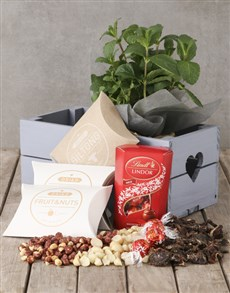 flowers: Herb with Lindt and Gourmet Treats Crate!
