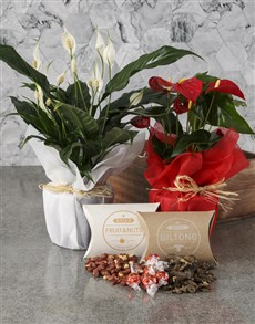 flowers: Anthurium And Peace Lily Gourmet Crate!