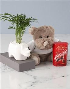 flowers: Love Palm Rhino Planter Hamper!